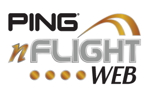 ping-nflight
